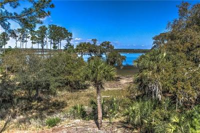 Beaufort County Single Family Home For Sale: 38 Fuller Pointe Drive