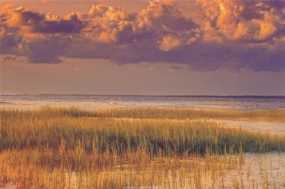 Hilton Head Island Residential Lots & Land For Sale: 8 Sailstock Point