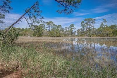 Beaufort County Single Family Home For Sale: 8 Gull Point Road