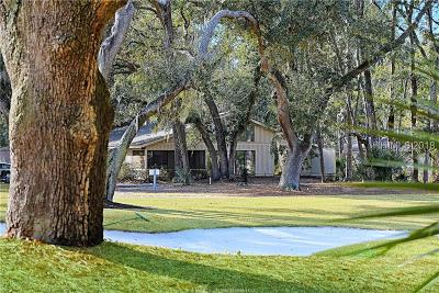 Beaufort County Single Family Home For Sale: 30 Wood Duck Court