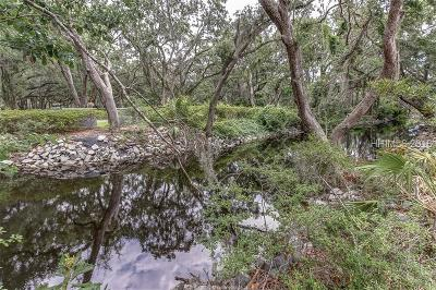 Hilton Head Island Residential Lots & Land For Sale: 53 Hearthwood Drive