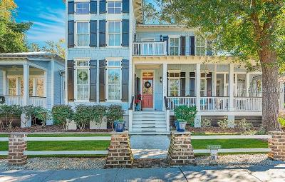 Beaufort Single Family Home For Sale: 125 South Park