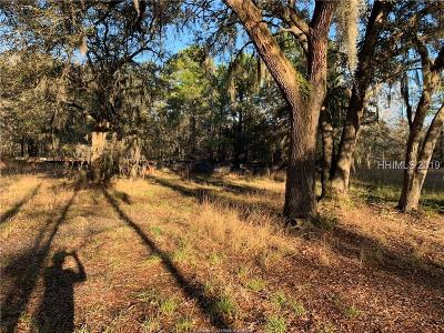 Hardeeville Single Family Home For Sale: 370 Roper Road