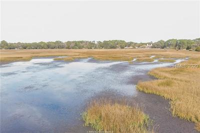 Hilton Head Island Residential Lots & Land For Sale: 31 Pine Island Road