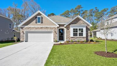 Beaufort County Single Family Home For Sale: 406 Rye Creek Circle