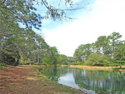 Hilton Head Island Residential Lots & Land For Sale: 6 Dunlin Place