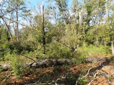 Hilton Head Island Residential Lots & Land For Sale: 11 Adell Lane
