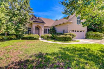 Beaufort County Single Family Home For Sale: 17 Palm View Drive