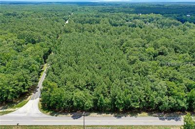 Commercial For Sale: Highway 17