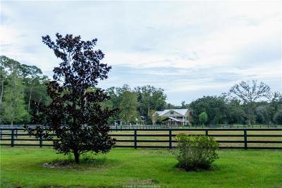 Okatie Single Family Home For Sale: 20 Ole Bent Oak Road