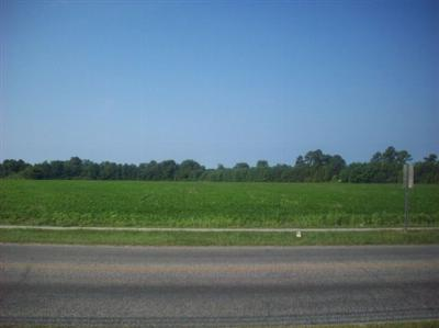 Marion County Residential Lots & Land For Sale: Bluff Street/Hwy 76 Business