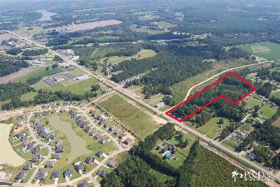 Florence, Flrorence, Marion, Pamplico Commercial Lots & Land For Sale: 6.85 Acres W Palmetto Street