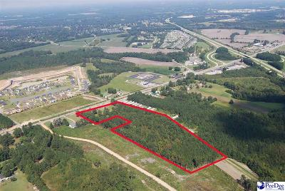 Florence, Flrorence, Marion, Pamplico Commercial For Sale: 12.56 Acres, W Palmetto Street