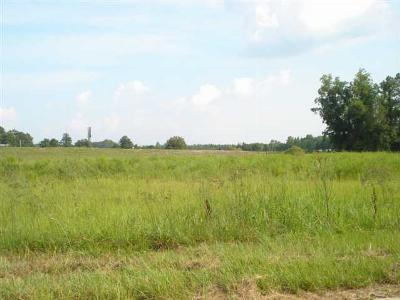 Commercial Lots & Land For Sale: Tbd W/S Of I-95