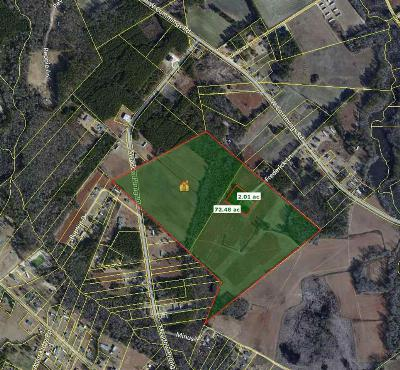 Effingham SC Residential Lots & Land For Sale: $170,000