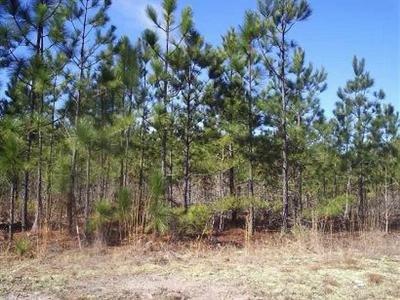 Residential Lots & Land Active-Price Change: Hartsville Ruby Road