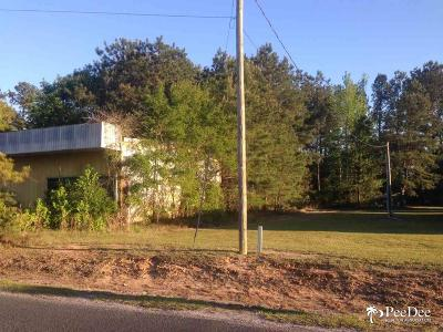 Florence, Flrorence, Marion, Pamplico Commercial Lots & Land For Sale: 112 Green Acres Road