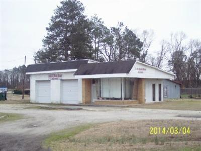 Dillon County Commercial For Sale: S Hwy 57