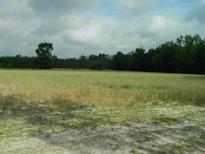 Marion County Residential Lots & Land For Sale: 1729 Wise Chapel Court