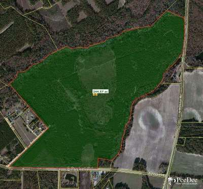 Residential Lots & Land Sold: 1401 E Pocket Road