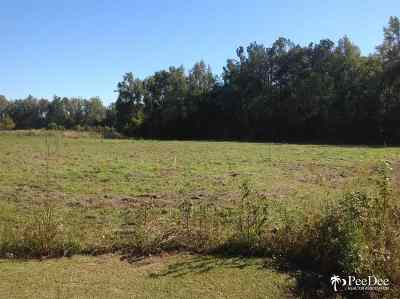 Johnsonville Residential Lots & Land For Sale: 1 Midway Hwy