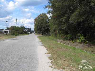 Commercial Lots & Land For Sale: Fronts Fourth Street