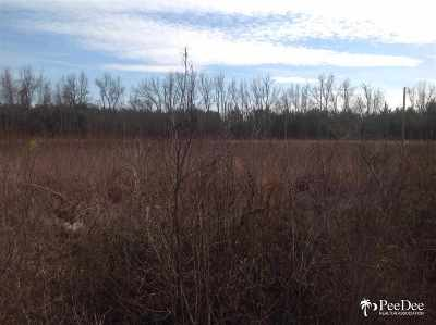 Johnsonville Residential Lots & Land For Sale: Maple St