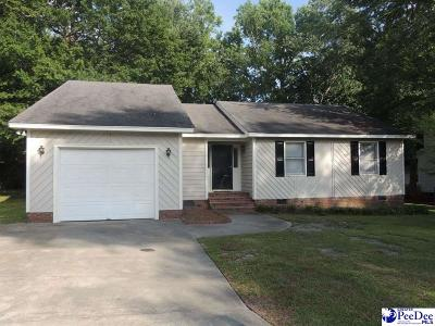Single Family Home Sold: 859 Wood Duck Lane