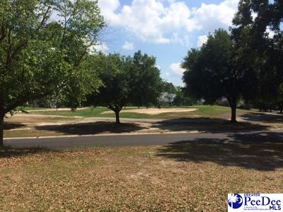 Effingham, Darlington, Darlinton, Florence, Flrorence, Marion, Pamplico, Timmonsville Residential Lots & Land Uc/Show For Back Up: 2701 Cypress Bend Road