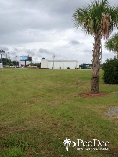 Florence, Flrorence, Marion, Pamplico Commercial For Sale: 111 Pamplico Highway
