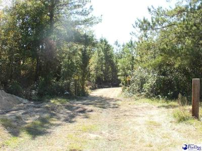 Residential Lots & Land Sold: N Bethel Rd