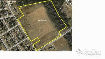 Marion County Residential Lots & Land For Sale: Highland