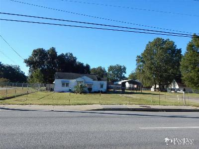 Florence, Flrorence, Marion, Pamplico Commercial Lots & Land For Sale: 1424 Pamplico Hwy