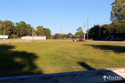 Commercial Lots & Land For Sale: N Fifth Street