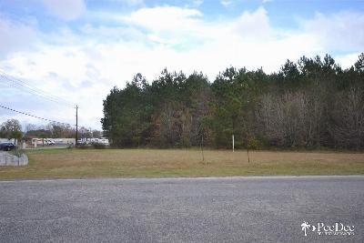 Commercial Lots & Land For Sale: Plantation Drive