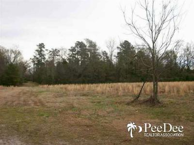Marion County Residential Lots & Land Active-Price Change: 9.4 Acres Lloyd St.