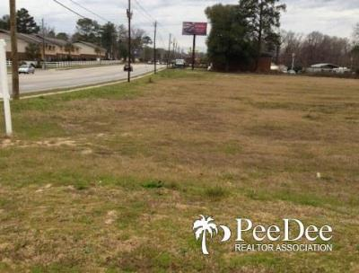 Florence, Flrorence, Marion, Pamplico Commercial Lots & Land For Sale: 2051 Second Loop