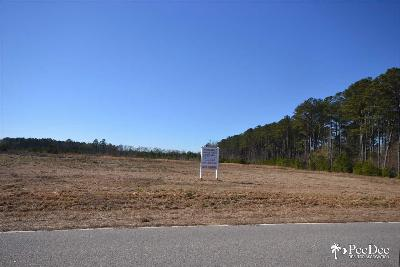Florence, Flrorence, Marion, Pamplico Commercial Lots & Land For Sale: Presbyterian Road