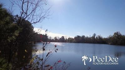 Dillon County Residential Lots & Land For Sale: Buck Swamp