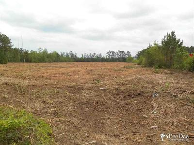Florence, Flrorence, Marion, Pamplico Commercial Lots & Land For Sale: 3500 TV Road