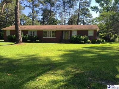 Darlington Single Family Home Uc/Show For Back Up: 104 Brittain Road