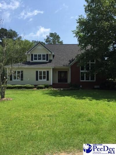 Hartsville Single Family Home For Sale: 428 Meadow Brook Terrace