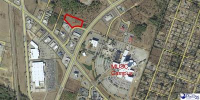 Florence, Flrorence, Pamplico Commercial Lots & Land For Sale: 1517 American Drive