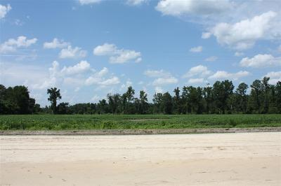 Johnsonville Residential Lots & Land For Sale: 1 W Us Highway 378