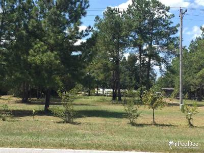 Kingstree Residential Lots & Land For Sale: Sumter Hwy./Hwy 527