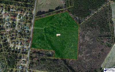 Effingham, Darlington, Darlinton, Florence, Flrorence, Marion, Pamplico, Timmonsville Residential Lots & Land Uc/Show For Back Up: 567 E McIver Road