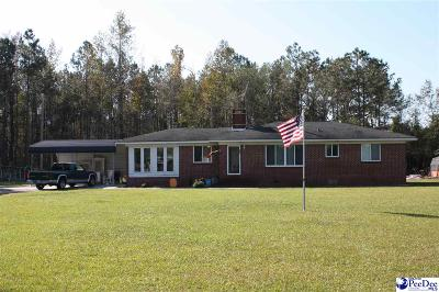 Johnsonville Single Family Home Uc/Show For Back Up: 2368 Vox Highway