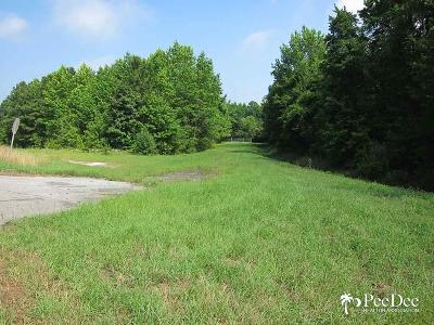 Residential Lots & Land For Sale: S Governor Williams Highway