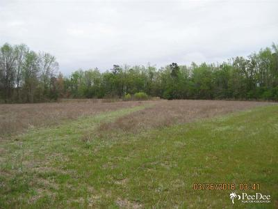 Pamplico Residential Lots & Land For Sale: W Highway 378