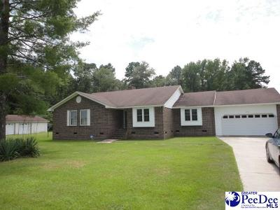 Darlington Single Family Home For Sale: 1532 Potato House Road